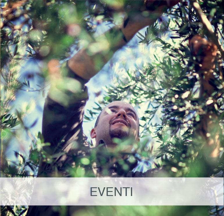 Box-Eventi-Frantoio-Portofino